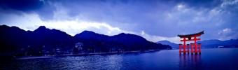 Conséquences de la catastrophe nucléaire de Fukishima sur la qualité du poisson