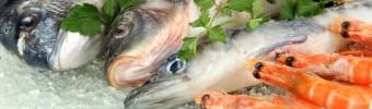 Elke dag vis dankzij de diepvries