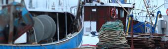 INN : la guerre contre la pêche illicite continue de s'intensifier