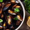 t56crop-mussels_437540053