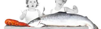 De essentiële rol van vis en zeevruchten om de wereld te voeden
