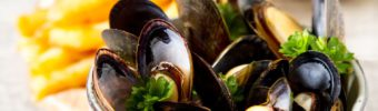 The many merits of the modest mussel